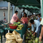 Building livelihood alternatives in the Petén of Guatemala
