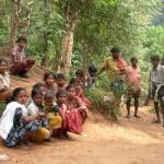 """Derechos para los """"reyes de la selva"""" en el Nilgiri (India)"""